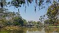 Thailand, Rai Mae Fa Luang (14 van 32).jpg