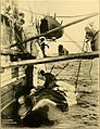 The American whaleman - a study of life and labor in the whaling industry (1928) (18161717165).jpg