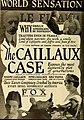 The Caillaux Case.jpg