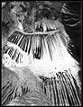 The Cascades, River Cave (Jenolan Caves, New South Wales) - (Frank Hurley) (9781005761).jpg