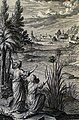 The Phillip Medhurst Picture Torah 283. Moses in the bulrushes. Exodus cap 2 v 3. Friderich.jpg