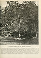 The Photographic History of The Civil War Volume 04 Page 149.jpg