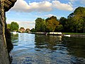 The Thames, Abingdon - geograph.org.uk - 291348.jpg