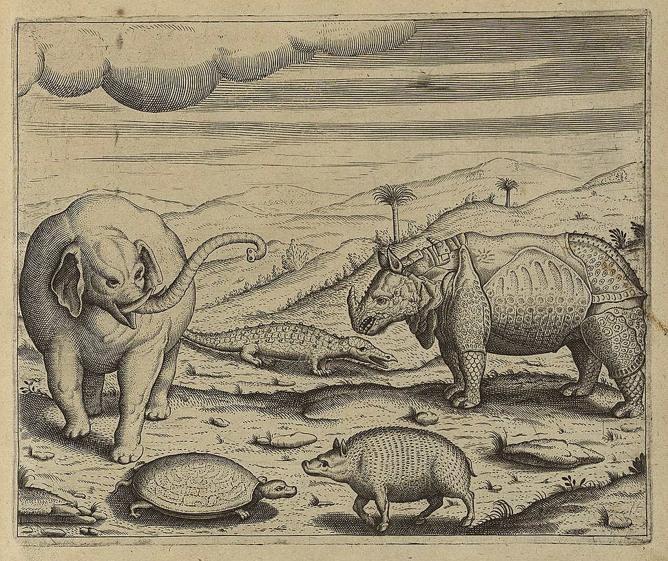 Thiere in Indien (Dietrisch, de Bry)