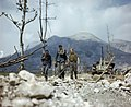 Three German prisoners walking back through the Allied lines at Cassino in Italy, May 1944. TR1797.jpg