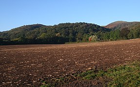 Tinkers Hill - geograph.org.uk - 590231.jpg