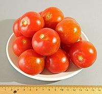 Tomato variety Tomazur 02 (fcm) .jpg