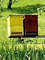 Tradičná ľudová činnosť, včelárstvo 20 Slovakia 1.jpg