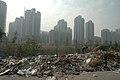 Trash Shanghai.jpg