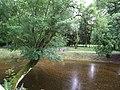 Trebisov Andrassyovsky kastiel (park)-26.JPG