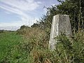 Trig Point on Baulker Lane - geograph.org.uk - 42044.jpg