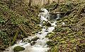 Trimbach Falls (26520771612).jpg