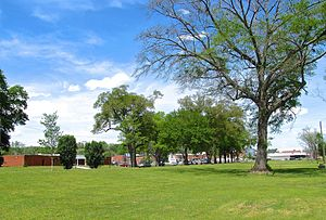 Trion, Georgia - Town Hall and other buildings viewed from across Trion Park