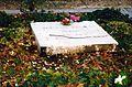 Tristan Tzara's Grave in Paris.jpg