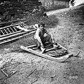 """Trnjeva brana za """"mirnje"""" (korenje) sejat. Rabijo jo po setvi. Brano obteži otrok ali pa nalože nanjo kamenje. Velike Loče 1955.jpg"""