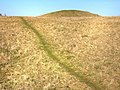 Tumulus, Old Winchester Hill - geograph.org.uk - 692826.jpg