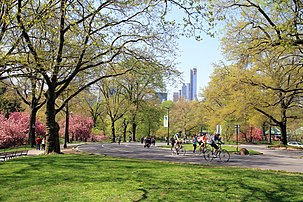 USA-NYC-Central Park3
