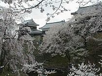 Ueda Castle.JPG