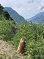 Une borne lors de l'ascension du Mont-Dauphin en 2020 (4).jpg