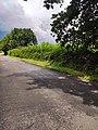 Une voie verte en France.jpg