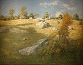 Upland Pasture.JPG