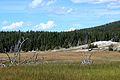 Upper Geyser Basin Yellowstone 02.JPG
