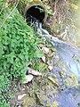 Usa Salinenkanal mit Algen.jpg