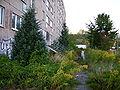 Vacant Plattenbau in Neubrandenburg-2.jpg