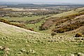 Valley on the slopes of Povington Hill - geograph.org.uk - 764560.jpg