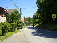 Velka Lecice-cesta.jpg