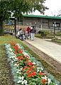 Vista de la estación..jpg
