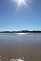 Vue de l'Isle depuis un carrelet (Saint-Pardon est sur l'autre rive).jpg