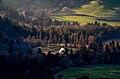 Vue depuis le Puy de l'Angle - la vallée des Monts-Dore.jpg