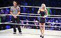 WWE Smackdown Wrestlemania Revenge (8660965321).jpg
