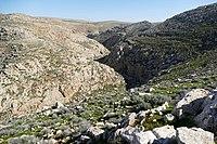 Wadi-Makukh-526.jpg