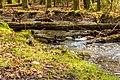 Wandeling over het Hulshorsterzand-Hulshorsterheide 07-03-2020. (d.j.b) 25.jpg