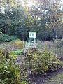 Warszawski Ogród Botaniczny – 29.jpg