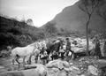 Waschen der Pferde am Fluss - CH-BAR - 3238601.tif