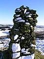 Wellhill Cairn - geograph.org.uk - 970855.jpg