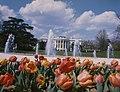 White House Spring 1975 C.jpg