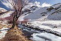 Winter (164560999).jpeg
