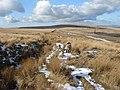 Winter Hill Flats - geograph.org.uk - 133368.jpg