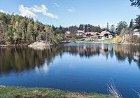 Wolfsgrubner See, NW-Teil.jpg