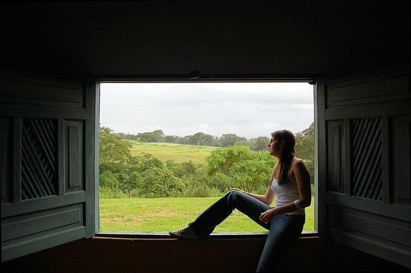 File:Woman sitting in a window.jpg
