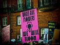 Women's March London (32148806944).jpg