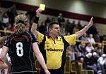 Yellow card handball.jpg