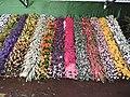 Yercaud 44th Flowershow-11-yercaud-salem-India.jpg