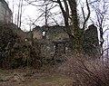 Zamek i pałac Viesytno w Płoninie. Foto Barbara Maliszewska (5).JPG