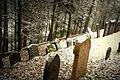 Zasněžený židovský hřbitov.JPG