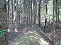 Zehnsberg (25).jpg
